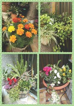 Collage 2013-10-07 13_45_29.jpg